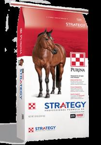 Product_Horse_Strategy_GX_Professional_Formula_2019