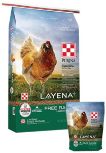 Products_Flock_Purina-Layena-Free-Range-Layer-Pellets-40-10-Combo
