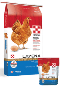 Products_Flock_Purina-Layena-Layer-Pellets-50-10-Combo