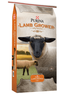 Product_Sheep_Purina-Lamb-Grower