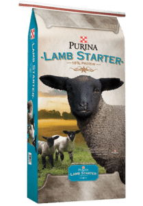 Product_Sheep_Purina-Lamb-Starter